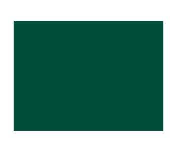 Sandtex 10 year Gloss RACING GREEN 750ml | Ruthin Decor on zinsser exterior paint, dulux exterior paint, glidden exterior paint, gloss exterior paint, crown exterior paint, satin exterior paint, fired earth exterior paint, weathershield exterior paint, rust-oleum exterior paint,
